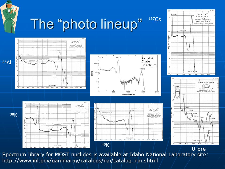The photo lineup 137 Cs 40 K Spectrum library for MOST nuclides is available at Idaho National Laboratory site: http://www.inl.gov/gammaray/catalogs/nai/catalog_nai.shtml 28 Al 38 K U-ore Banana Crate Spectrum