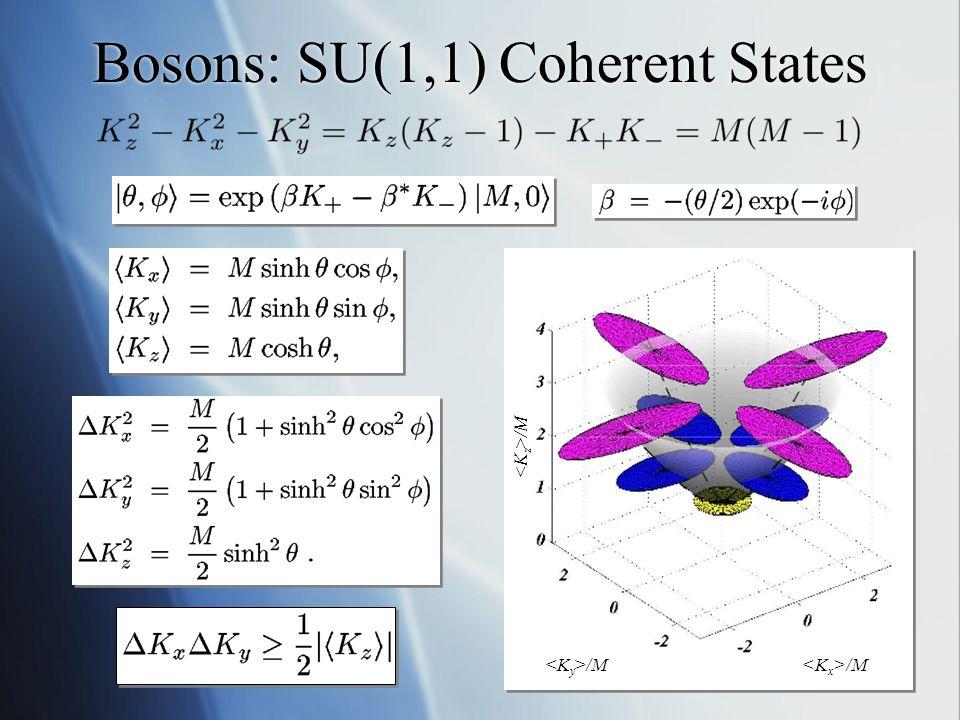 Fermions: SU(2) Coherent States /M