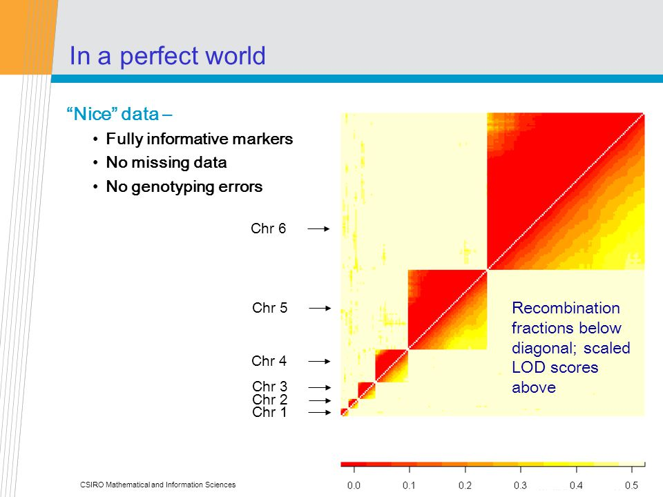 CSIRO Mathematical and Information Sciences In a perfect world Nice data – Fully informative markers No missing data No genotyping errors Chr 1 Chr 2 Chr 3 Chr 4 Chr 5 Recombination fractions below diagonal; scaled LOD scores above Chr 6