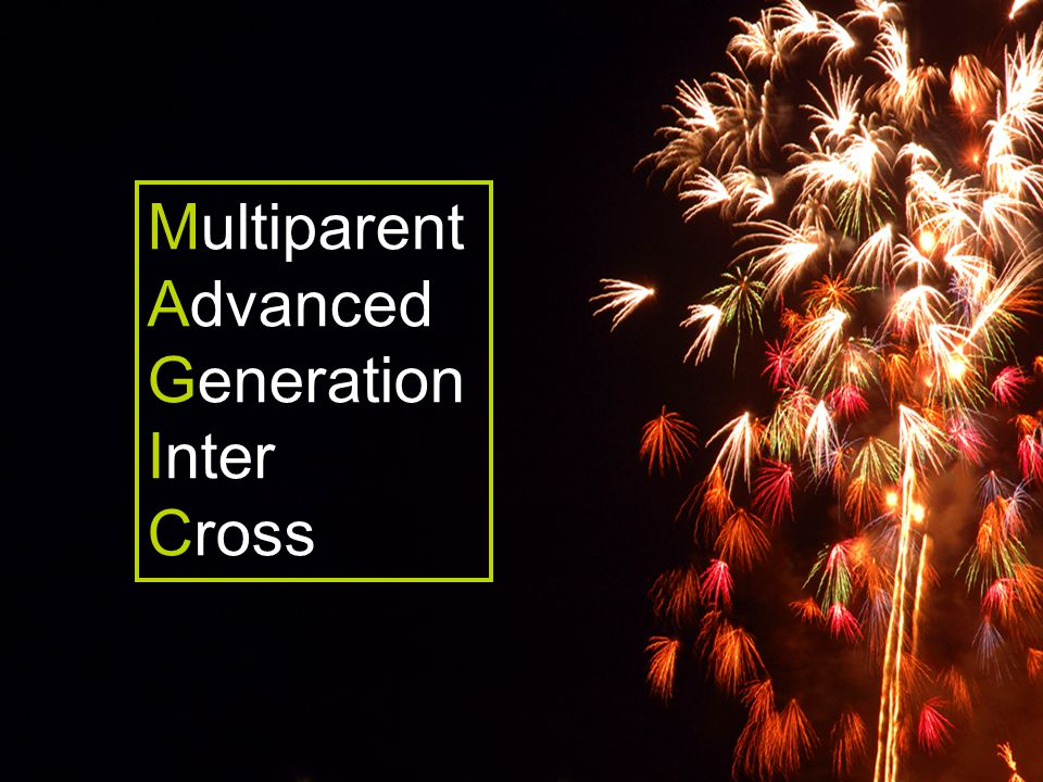 Multiparent Advanced Generation Inter Cross