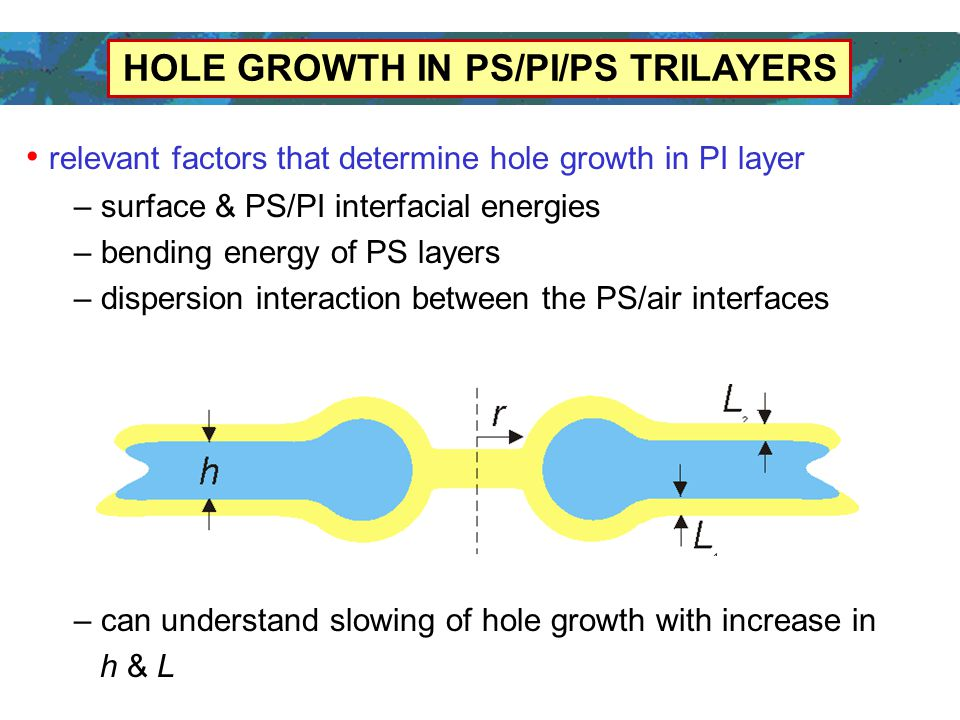 HOLE GROWTH IN PS/PI/PS TRILAYERS relevant factors that determine hole growth in PI layer – surface & PS/PI interfacial energies – bending energy of PS layers – dispersion interaction between the PS/air interfaces – can understand slowing of hole growth with increase in h & L