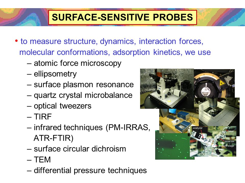 to measure structure, dynamics, interaction forces, molecular conformations, adsorption kinetics, we use – atomic force microscopy – ellipsometry – surface plasmon resonance – quartz crystal microbalance – optical tweezers – TIRF – infrared techniques (PM-IRRAS, ATR-FTIR) – surface circular dichroism – TEM – differential pressure techniques SURFACE-SENSITIVE PROBES