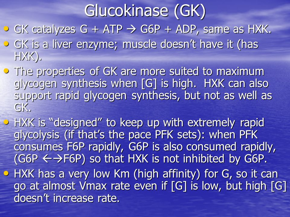 Glucokinase (GK) GK catalyzes G + ATP  G6P + ADP, same as HXK. GK catalyzes G + ATP  G6P + ADP, same as HXK. GK is a liver enzyme; muscle doesn't ha