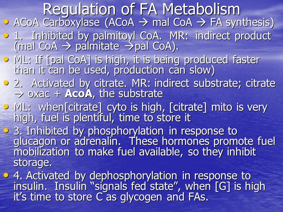 Regulation of FA Metabolism ACoA Carboxylase (ACoA  mal CoA  FA synthesis) ACoA Carboxylase (ACoA  mal CoA  FA synthesis) 1.Inhibited by palmitoyl CoA.