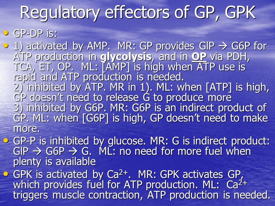 Regulatory effectors of GP, GPK GP-DP is: GP-DP is: 1) activated by AMP.