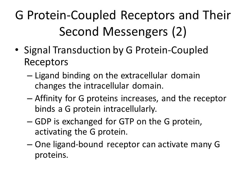 G Protein-Coupled Receptors and Their Second Messengers (2) Signal Transduction by G Protein-Coupled Receptors – Ligand binding on the extracellular domain changes the intracellular domain.