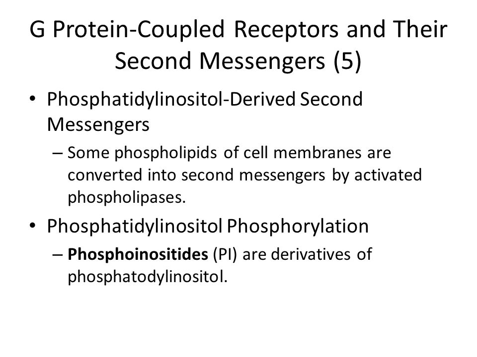 G Protein-Coupled Receptors and Their Second Messengers (5) Phosphatidylinositol-Derived Second Messengers – Some phospholipids of cell membranes are converted into second messengers by activated phospholipases.