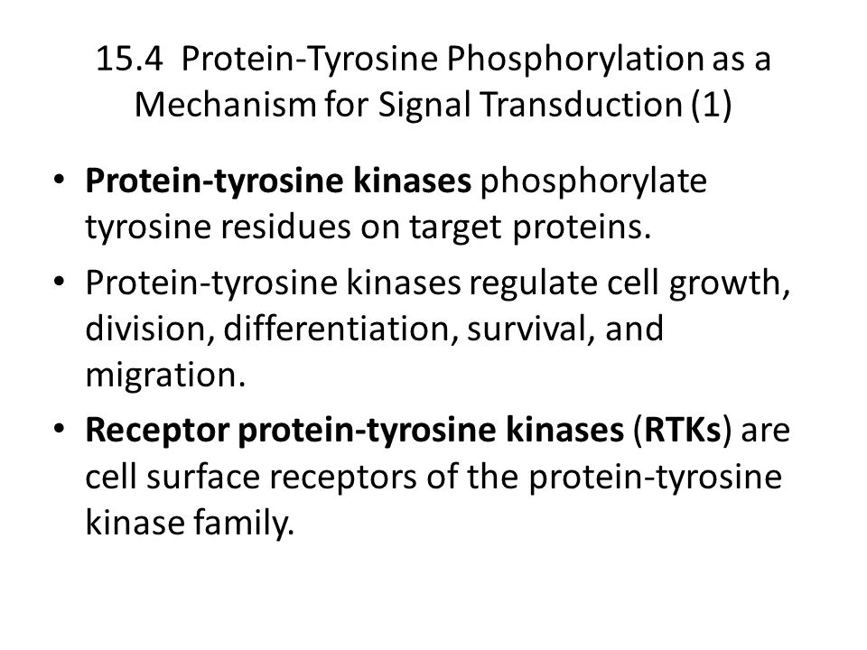 15.4 Protein-Tyrosine Phosphorylation as a Mechanism for Signal Transduction (1) Protein-tyrosine kinases phosphorylate tyrosine residues on target proteins.