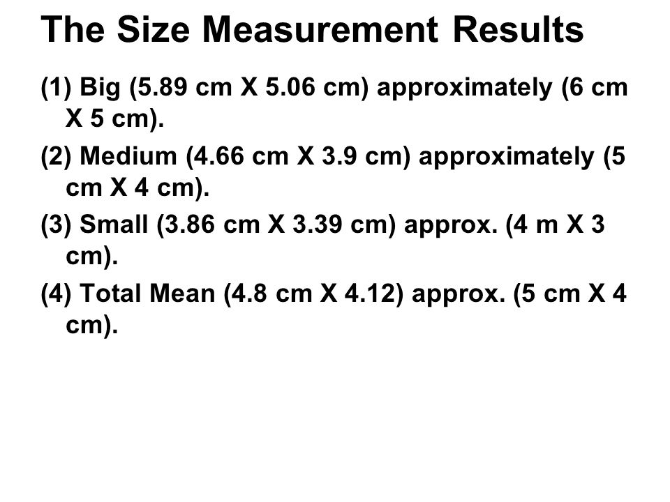 The Size Measurement Results (1) Big (5.89 cm X 5.06 cm) approximately (6 cm X 5 cm).
