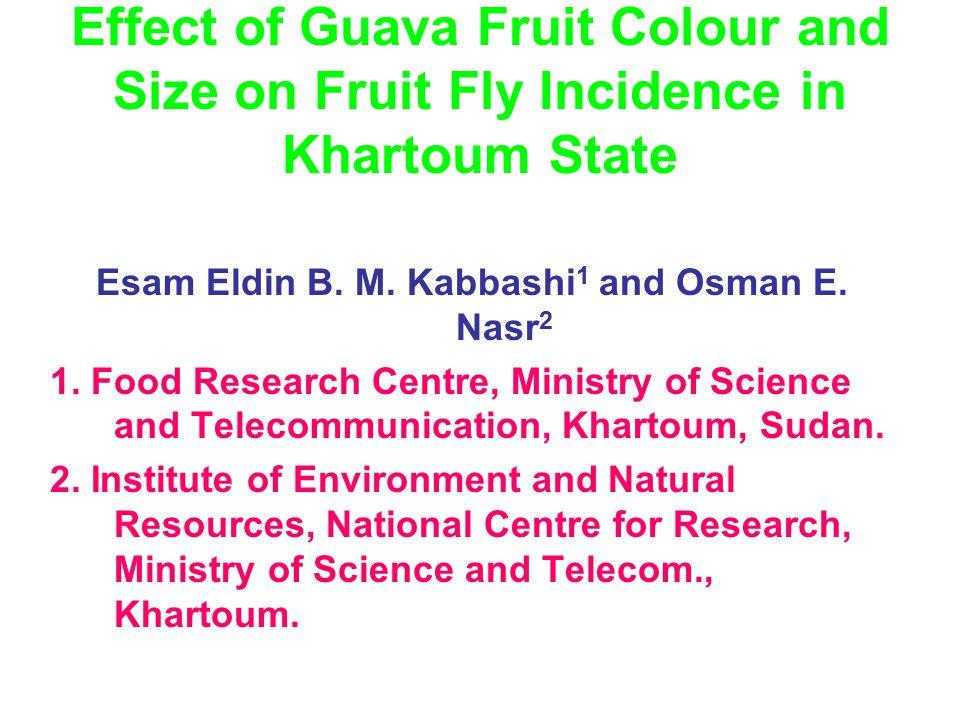 Guava (Psidium guajava L.) marketable sizes were standardized in Khartoum.