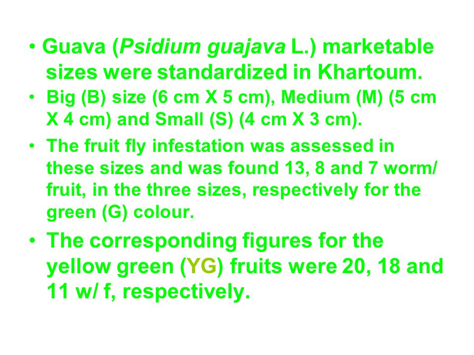 * The mean infestation of fruit flies to guava fruits decreased with the fruit size.