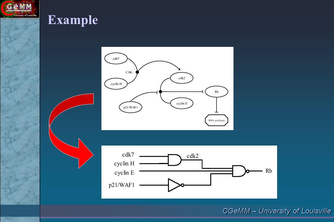CGeMM – University of Louisville Example