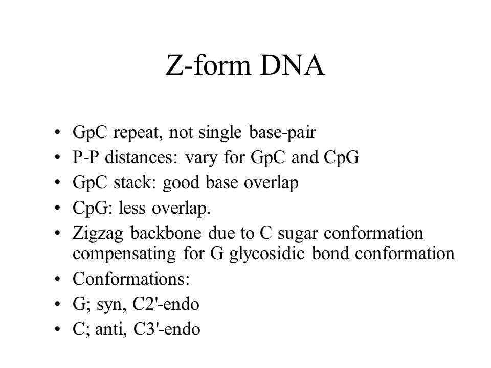 Z-form DNA GpC repeat, not single base-pair P-P distances: vary for GpC and CpG GpC stack: good base overlap CpG: less overlap.