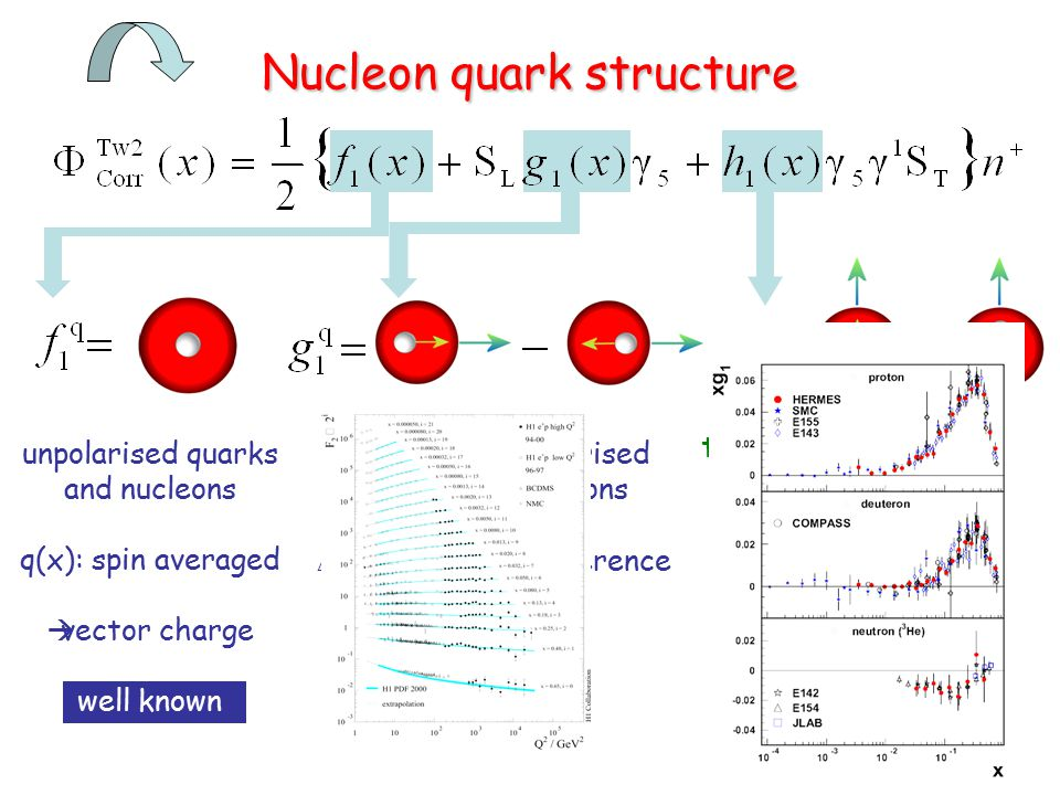 longitudinally polarised quarks and nucleons  q(x): helicity difference  axial charge known Nucleon quark structure unpolarised quarks and nucleons q(x): spin averaged  vector charge well known transversely polarised quarks and nucleons  q(x): helicity flip  tensor charge measuring !