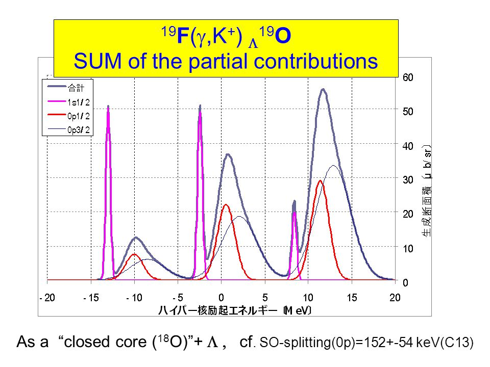 19 F( ,K + )  19 O SUM of the partial contributions As a closed core ( 18 O) +  cf.