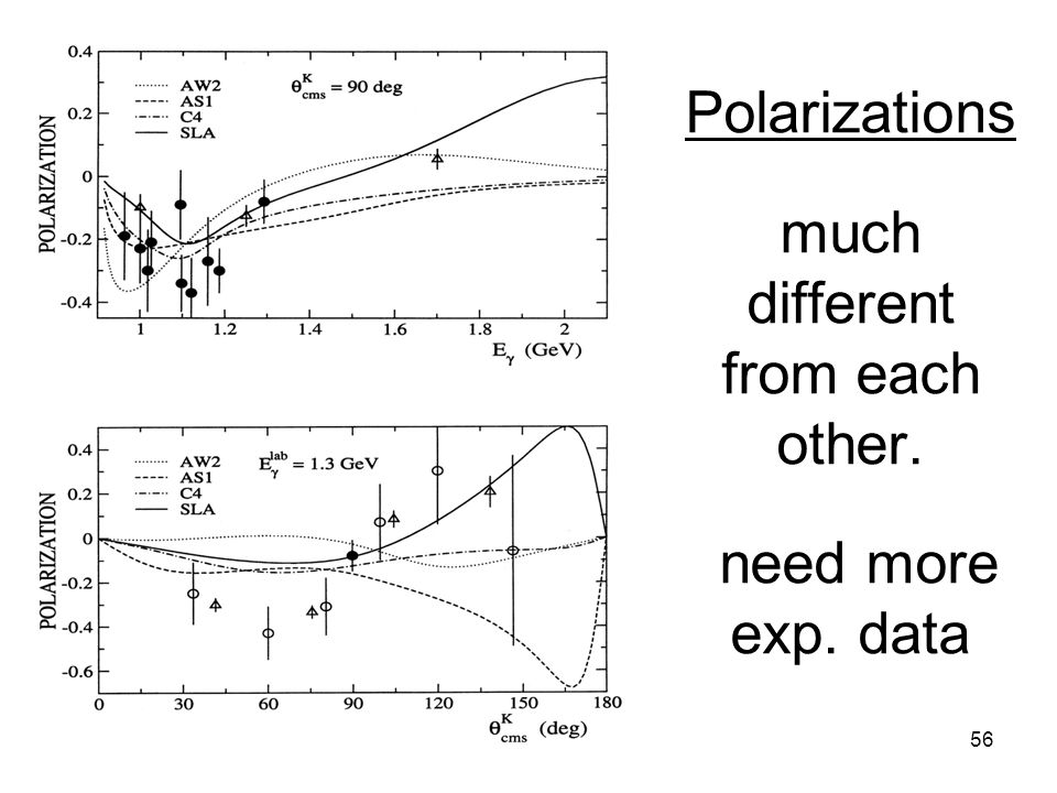 Polarizations much different from each other. need more exp. data 56