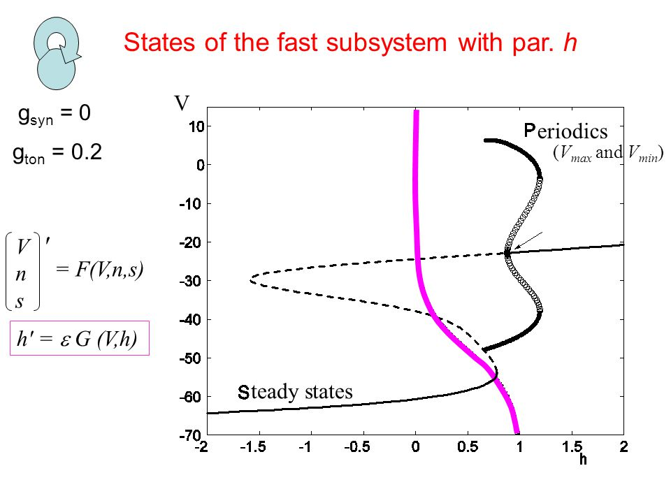 g syn = 0 States of the fast subsystem with par.