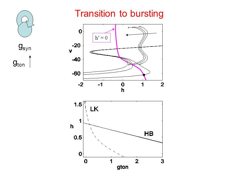 g syn h′ = 0 g ton Transition to bursting