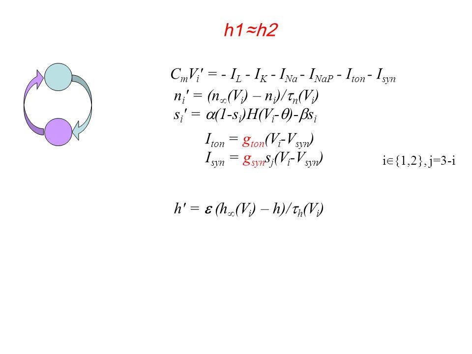 n i ′ = (n ∞ (V i ) – n i )/  n (V i ) s i ′ =  (1-s i )H(V i -  )-  s i h′ =  (h ∞ (V i ) – h)/  h (V i ) C m V i ′ = - I L - I K - I Na - I NaP - I ton - I syn I ton = g ton (V i -V syn ) I syn = g syn s j (V i -V syn ) i ∈ {1,2}, j=3-i h1 ≈h2