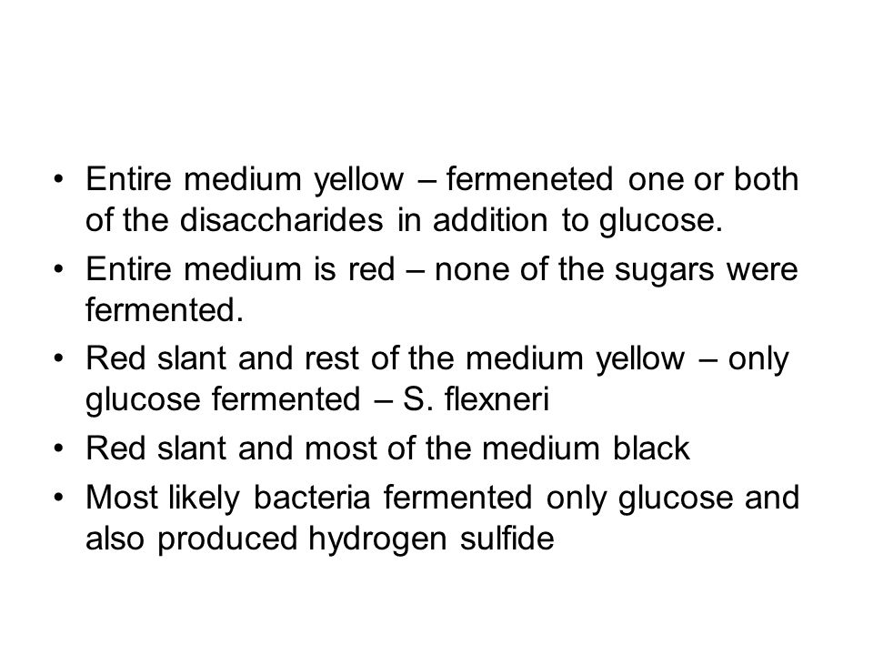 Entire medium yellow – fermeneted one or both of the disaccharides in addition to glucose.