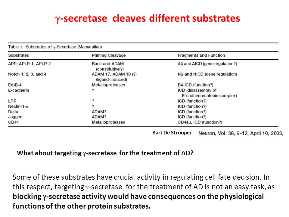  -secretase cleaves different substrates Some of these substrates have crucial activity in regulating cell fate decision.