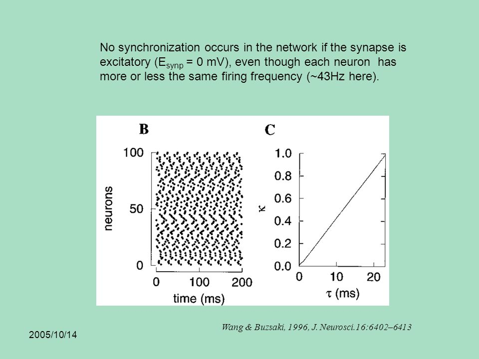 2005/10/14 No synchronization occurs in the network if the synapse is excitatory (E synp = 0 mV), even though each neuron has more or less the same firing frequency (~43Hz here).
