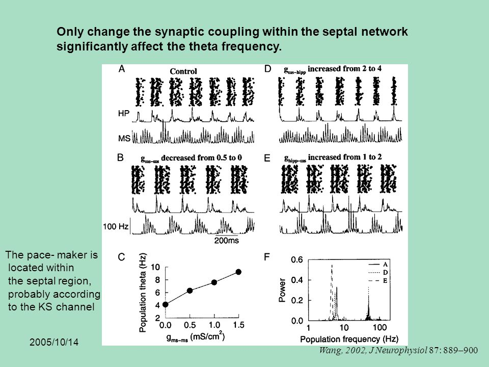 2005/10/14 Only change the synaptic coupling within the septal network significantly affect the theta frequency.