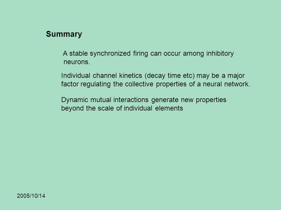 2005/10/14 Summary A stable synchronized firing can occur among inhibitory neurons.