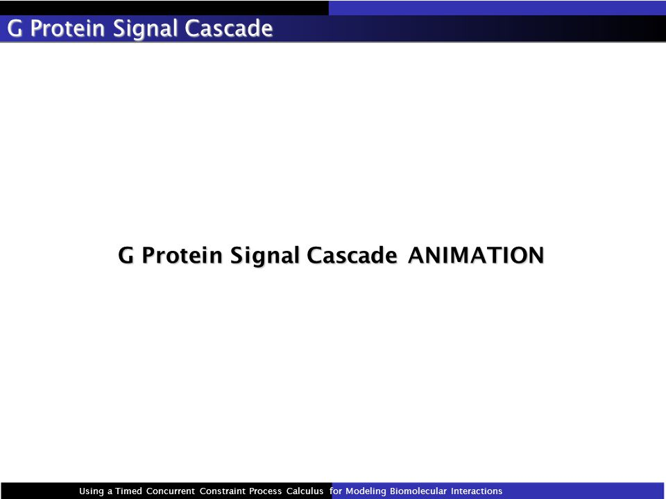 G Protein Signal Cascade Using a Timed Concurrent Constraint Process Calculus for Modeling Biomolecular Interactions G Protein Signal Cascade ANIMATION G Protein Signal Cascade ANIMATION