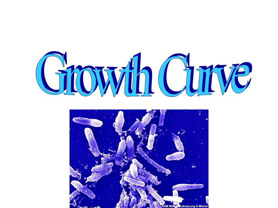 Identify the four phases of the growth curve Calculate generation time Make use of the growth curve OBJECTIVES