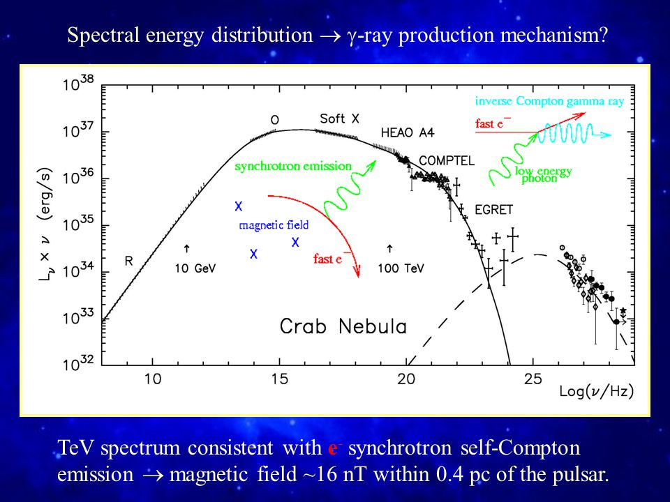Spectral energy distribution   -ray production mechanism.