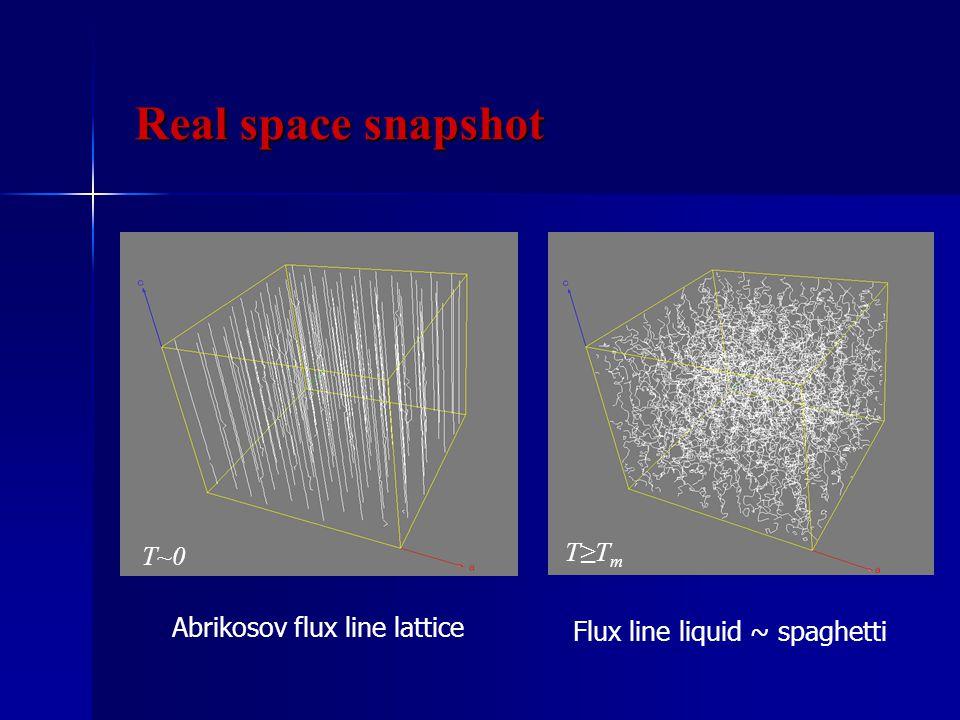 T~0 Abrikosov flux line lattice Flux line liquid ~ spaghetti T≥T m Real space snapshot