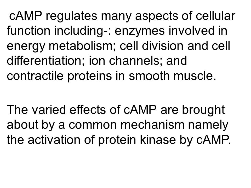 cAMP regulates many aspects of cellular function including-: enzymes involved in energy metabolism; cell division and cell differentiation; ion channels; and contractile proteins in smooth muscle.