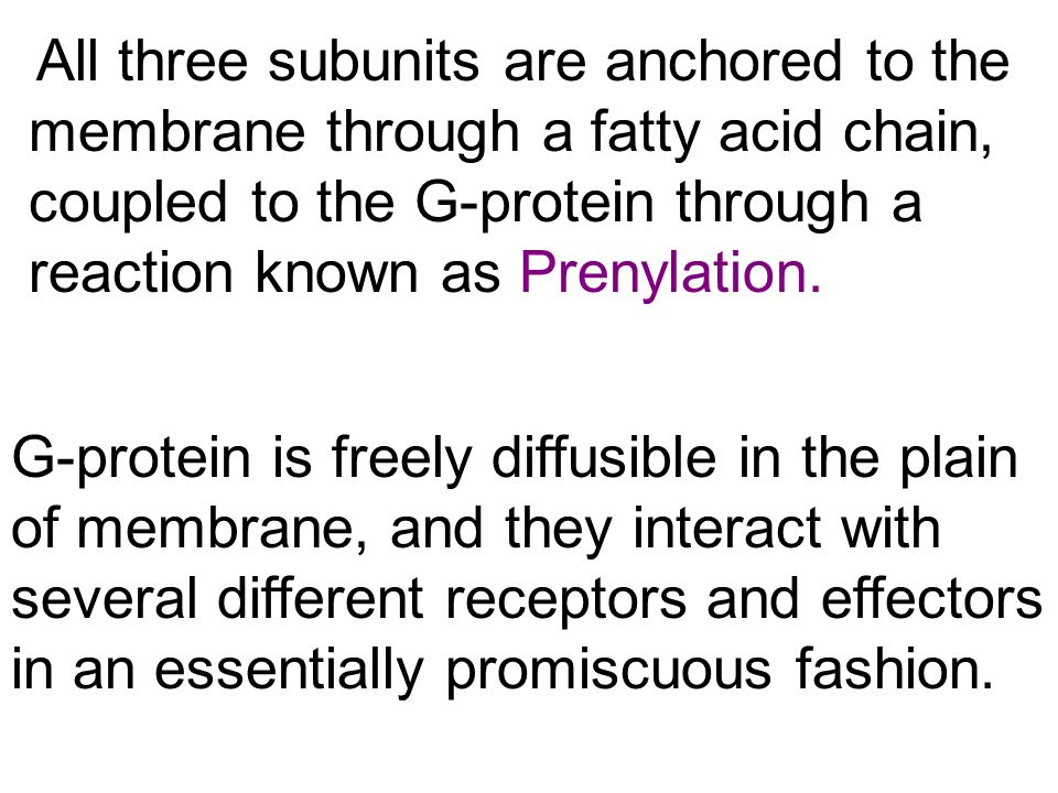 All three subunits are anchored to the membrane through a fatty acid chain, coupled to the G-protein through a reaction known as Prenylation.
