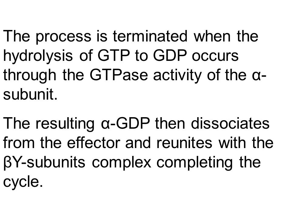 The process is terminated when the hydrolysis of GTP to GDP occurs through the GTPase activity of the α- subunit.