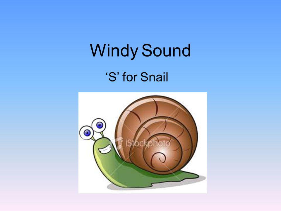 Poppy Sound 'B' for Band