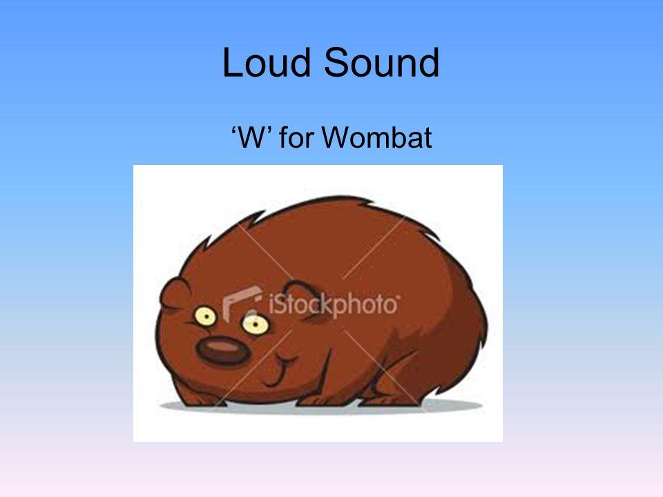 'S' for Snail Windy Sound