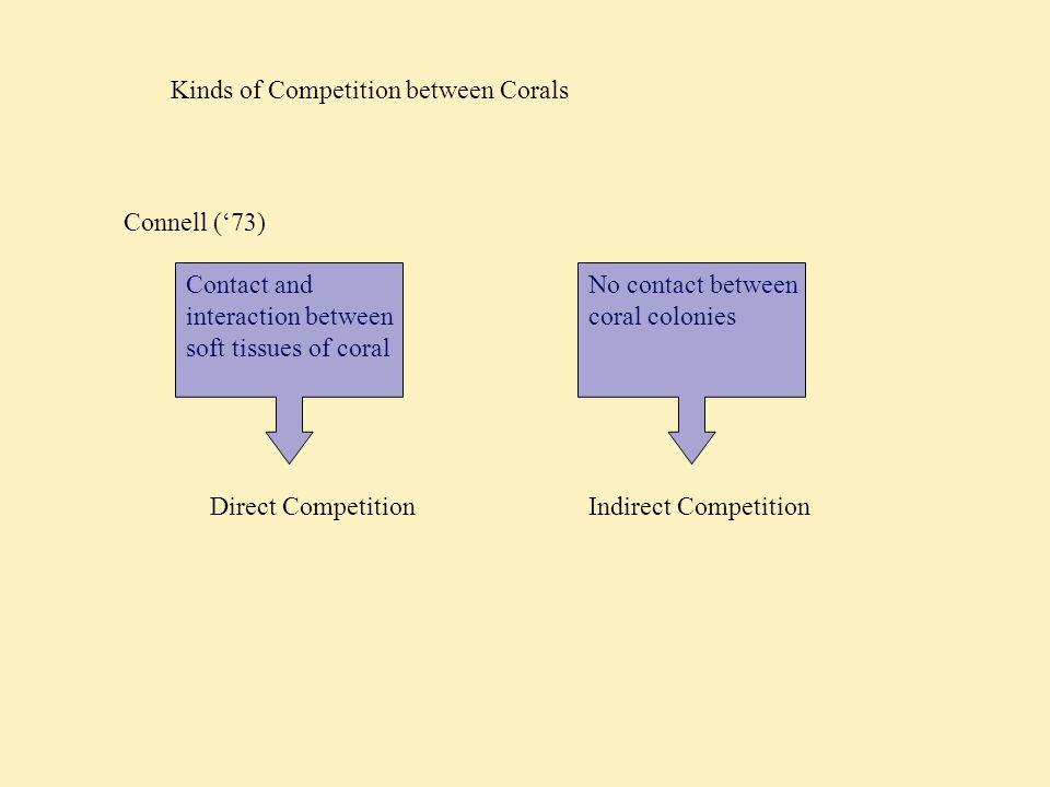 Kinds of Competition between Corals Direct Competition 1. Mesenterial Filaments
