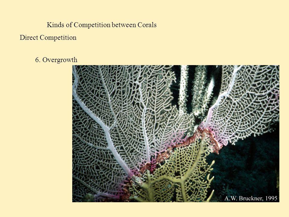 Competition among Reef Fish Acropora nasuta Acropora gemmifera HABITAT CHOICE