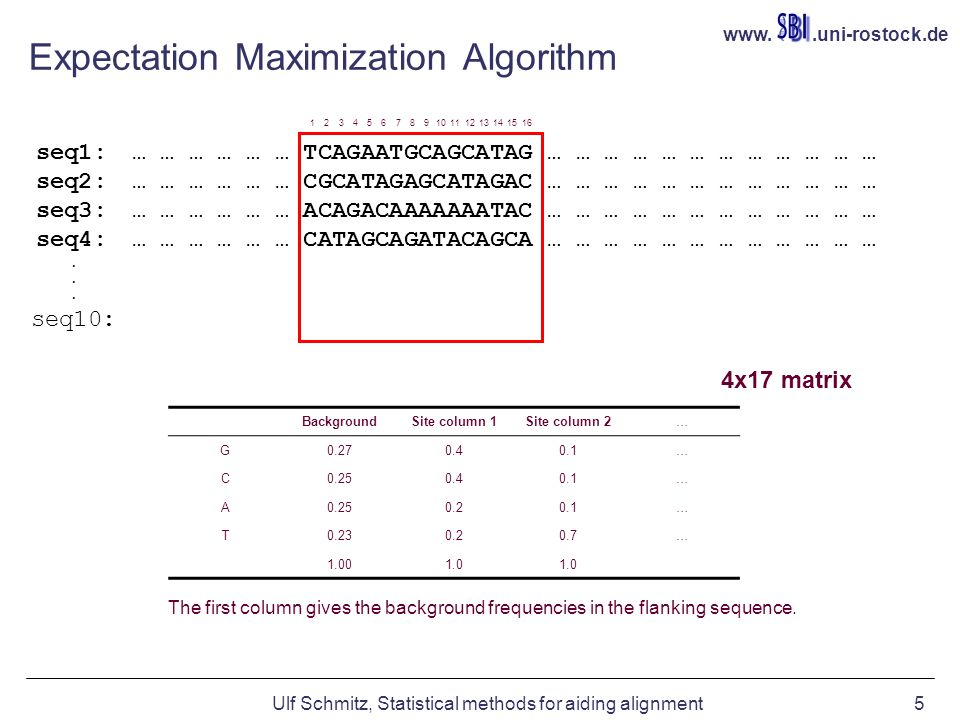 www..uni-rostock.de Ulf Schmitz, Statistical methods for aiding alignment5 Expectation Maximization Algorithm seq1: … … … … … … TCAGAATGCAGCATAG … … … … … … … … … … … … seq2: … … … … … … CGCATAGAGCATAGAC … … … … … … … … … … … … seq3: … … … … … … ACAGACAAAAAAATAC … … … … … … … … … … … … seq4: … … … … … … CATAGCAGATACAGCA … … … … … … … … … … … … BackgroundSite column 1Site column 2… G0.270.40.1… C0.250.40.1… A0.250.20.1… T0.230.20.7… 1.001.0 The first column gives the background frequencies in the flanking sequence.