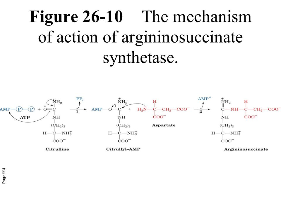 Figure 26-10The mechanism of action of argininosuccinate synthetase. Page 994