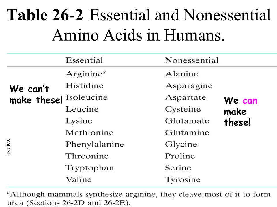 Table 26-2Essential and Nonessential Amino Acids in Humans.