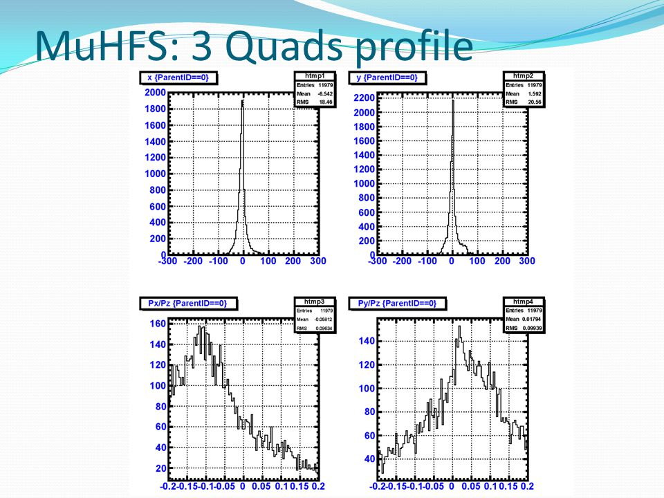 MuHFS: 3 Quads profile