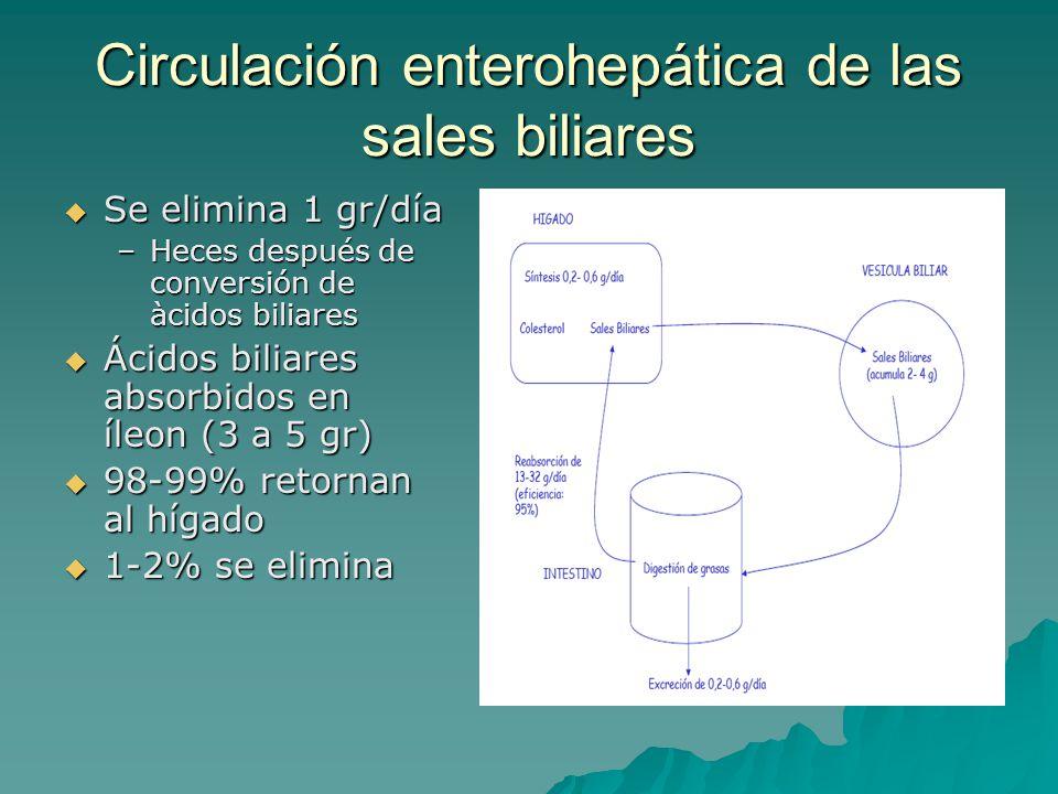 Circulación enterohepática de las sales biliares  Se elimina 1 gr/día –Heces después de conversión de àcidos biliares  Ácidos biliares absorbidos en