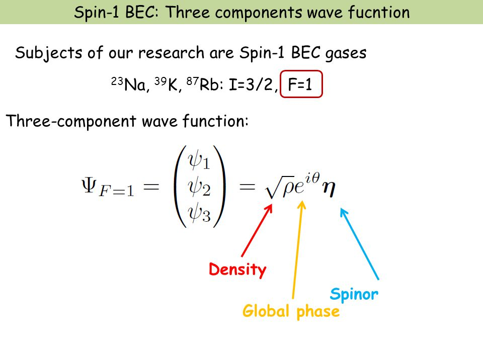 Three-component wave function: Subjects of our research are Spin-1 BEC gases 23 Na, 39 K, 87 Rb: I=3/2, F=1 Density Global phase Spinor Spin-1 BEC: Th