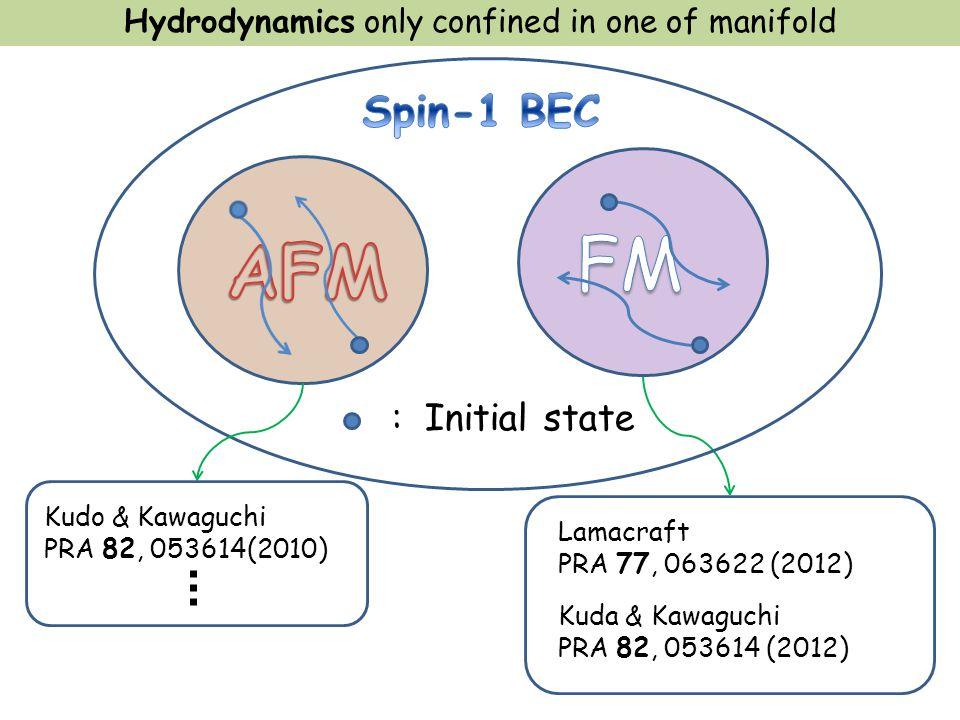 Hydrodynamics only confined in one of manifold Lamacraft PRA 77, 063622 (2012) : Initial state Kudo & Kawaguchi PRA 82, 053614(2010) Kuda & Kawaguchi PRA 82, 053614 (2012)