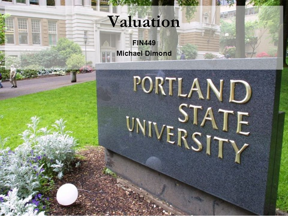 Valuation FIN449 Michael Dimond