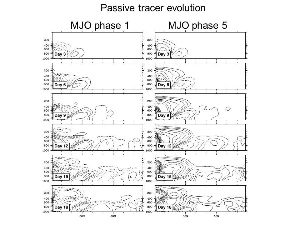 MJO phase 1MJO phase 5 Passive tracer evolution