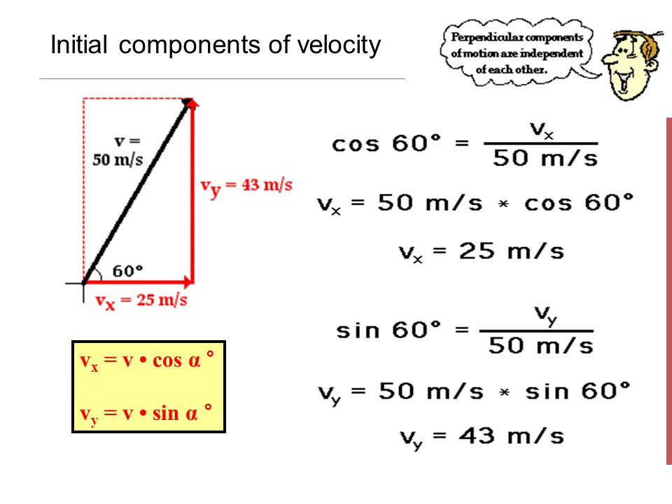 Initial components of velocity v x = v cos α ° v y = v sin α °