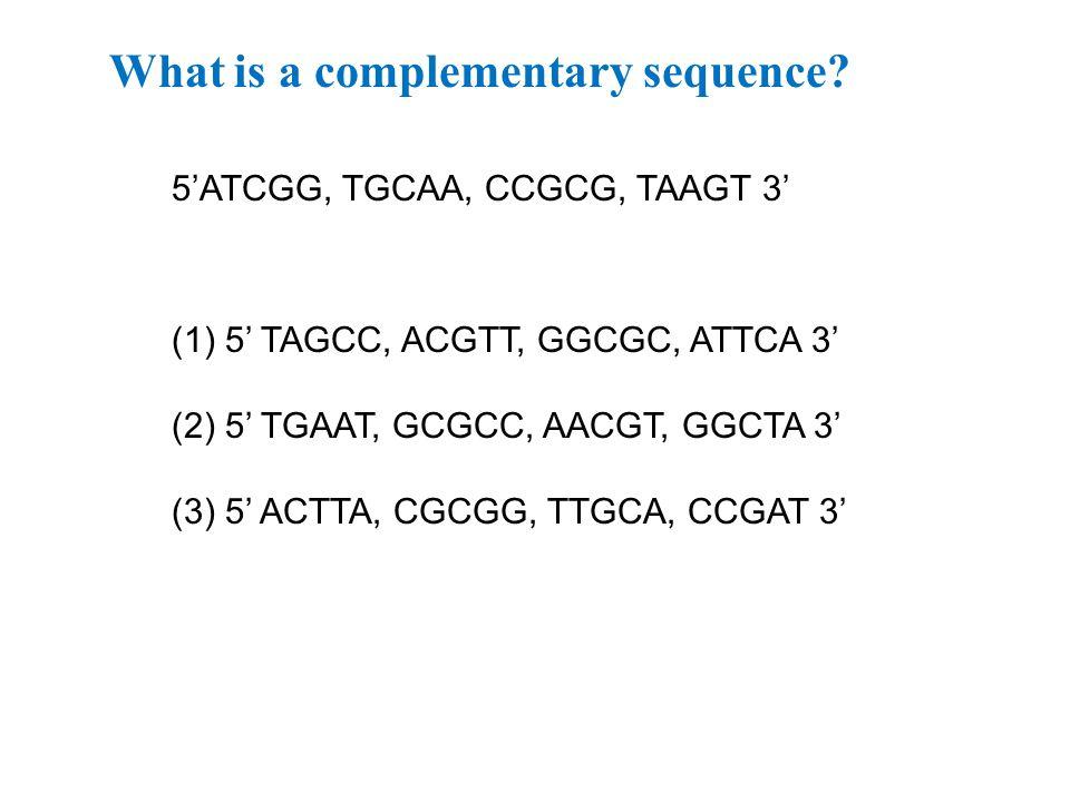 What is a complementary sequence? 5'ATCGG, TGCAA, CCGCG, TAAGT 3' (1)5' TAGCC, ACGTT, GGCGC, ATTCA 3' (2) 5' TGAAT, GCGCC, AACGT, GGCTA 3' (3) 5' ACTT